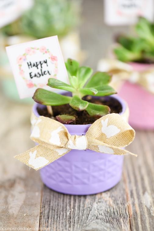 Mason-Jar-Crafts-Succulent-Planters.jpg
